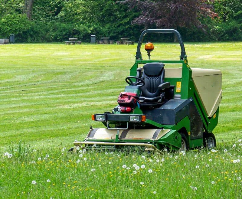 Gartenjahrespflege